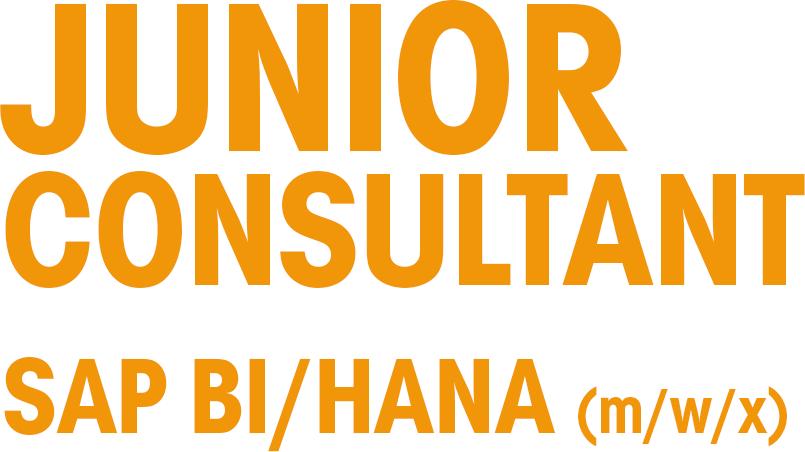 Junior Consultant_1